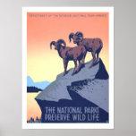 Viaje del vintage de América Posters