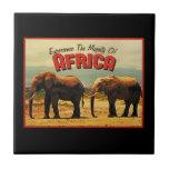 Viaje del vintage de los elefantes de África Teja
