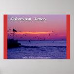 Viaje en transbordador de Galveston Tejas Poster