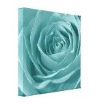Vibrant Aqua Rose, Floral Nature Photograph Canvas Print