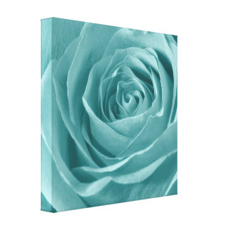 Vibrant Aqua Rose, Floral Nature Photograph Canvas Print