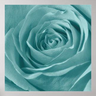 Vibrant Aqua Rose, Floral Nature Photograph Posters