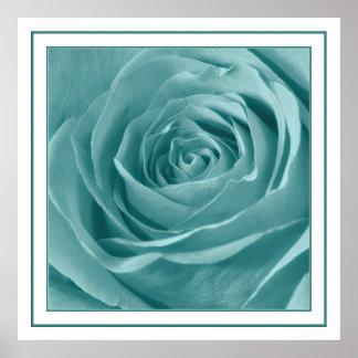 Vibrant Aqua Rose, Floral Nature Photograph Poster