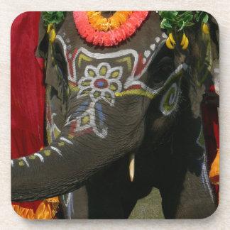 Vibrant Asian Elephant Photo Gift Beverage Coaster