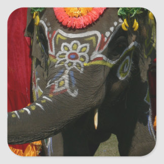 Vibrant Asian Elephant Photo Gift Square Sticker