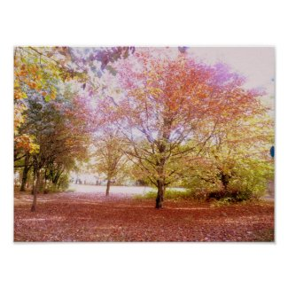 Vibrant Autumn Trees Poster