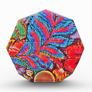 Vibrant Beautiful Multi Colored Patterns and Shape Award