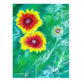 Vibrant Blanket Flowers Postcard