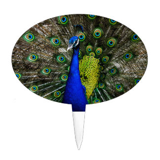 Vibrant Blue Green Peacock Cake Topper