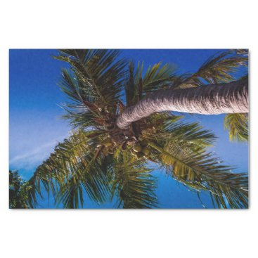 Beach Themed Vibrant Blue Sky Tropical Palm Tree Tissue Paper
