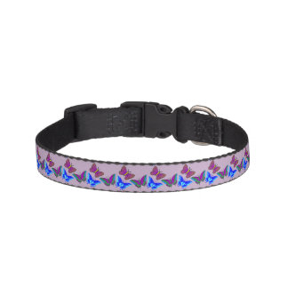 Vibrant Butterflies Dog Collar
