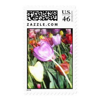 Vibrant Chicago Tulips Postage stamp