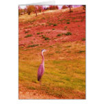 Vibrant Color Egret Cards