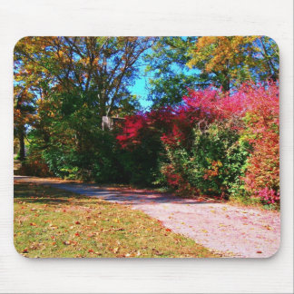 Vibrant Fall Day Mousepads