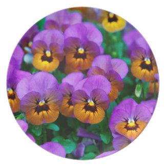 Vibrant Florals by Joyful Summer Melamine Plate