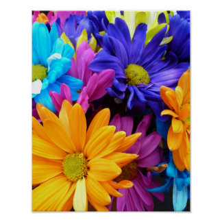 Vibrant Gerbera Daisy Bouquet Poster