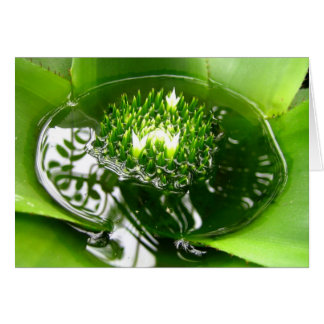 Vibrant green bromeliad notecard. card