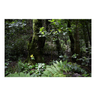 vibrant green forest poster