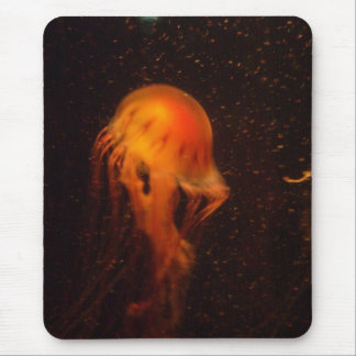 Vibrant Jellyfish Mouse Pad