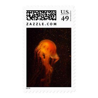Vibrant Jellyfish Postage Stamp