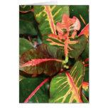 Vibrant Leaves Card