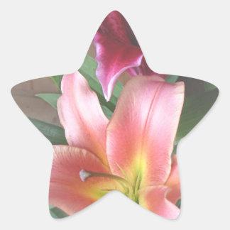 Vibrant Lily Duo Star Sticker