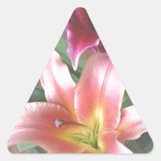 Vibrant Lily Duo Triangle Sticker