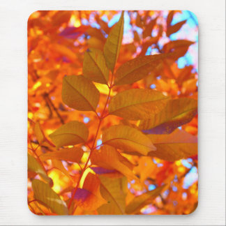 Vibrant Orange and Gold Autumn Leaves Mouse Pad