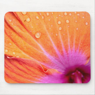Vibrant orange and pink Hibiscus flower mousepad