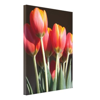 tulips, orange, flowers, gifts, wrapped canvas, wall art,