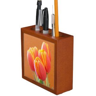 Vibrant Orange Tulip Photograph Pencil Holder