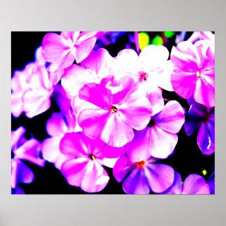 Vibrant Pink Floral Poster