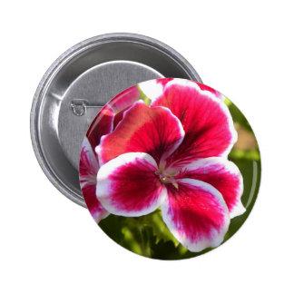 Vibrant pink geraniums 2 inch round button