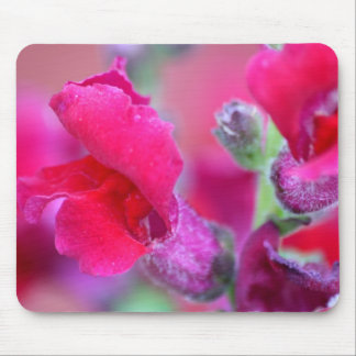 Vibrant Pink Snapdragons Mouse Pad