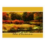 Vibrant Poconos Autumn Scene Postcard