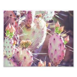 Vibrant Prickly Pear Closeup | Photo Print
