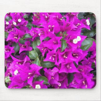 Vibrant Purple Bougainvillea Flowers Mouse Pad