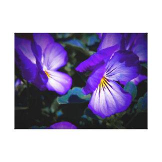 Vibrant Purple Pansies Canvas Print