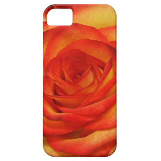Vibrant Red and Peach Rose Macro Photo iPhone SE/5/5s Case