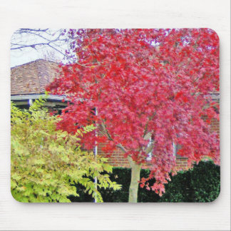 Vibrant Red Fall Tree Mouse Pad
