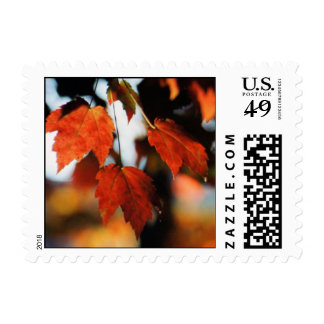 Vibrant Red Postage