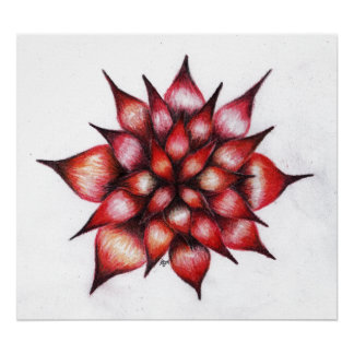 Vibrant Red Ray Flower Canvas Print