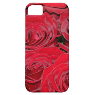 Vibrant Red Roses iPhone 5 Cover