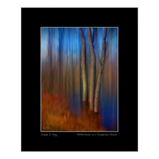 Vibrant Reflections in a Floodplain Forest Poster