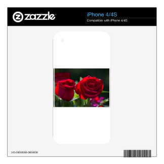 Vibrant Romantic Red Roses iPhone 4 Skins