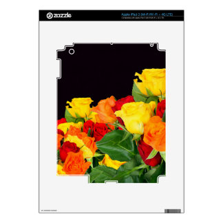Vibrant Roses Black Background Skins For iPad 3