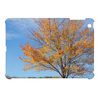 Vibrant Tree in Autumn iPad Mini Cases