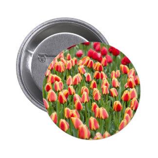 Vibrant Tulips Pinback Button