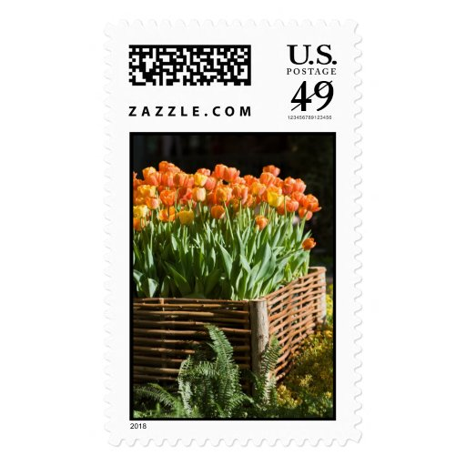 Vibrant tulips postage stamps