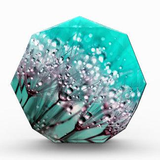 Vibrant Turquoise and Black Wet Dandelions Acrylic Award